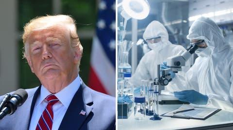 Trump-Corona-Labor.jpg
