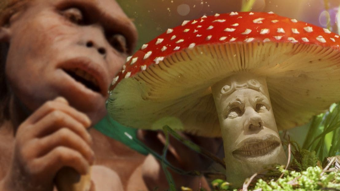 Mushroom expert exhumes the stoned ape theory - Big Think
