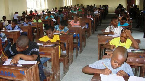 NECO releases 2020 common entrance examination results – Punch Newspapers