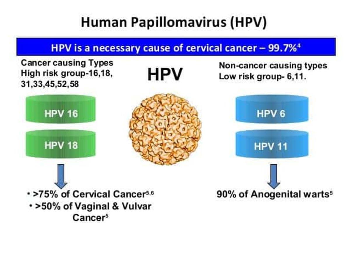 human papillomavirus of cancer cura de detoxifiere a ficatului