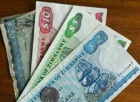 Zim Dollar To Return Next Month