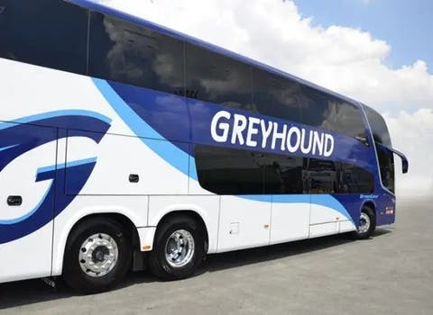 Greyhound Blames Covid-19 And Closed Borders For Its Demise -iHarare