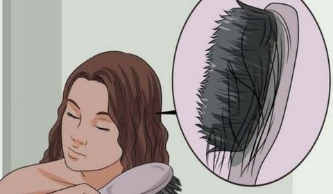 alimentos que evitam queda de cabelo