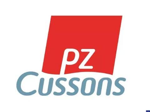 Ten Jostle For Pz Cussons Fashion Designer Competition Thisdaylive