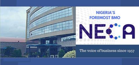 NECA urges FG on power sector, economy