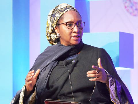 ZAINAB AHMED: We're Considering Introduction of Excise Duties on ...