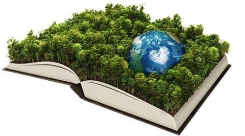 Educación para el desarrollo sustentable, un paso hacia el futuro -  EcoPortal.net